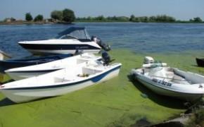 Locuri de pescuit. Pensiunea Gigant Fish – Delta Dunarii